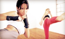 10 or 20 Drop-In Fitness Classes at NY Self-Defense &amp; Fitness (Up to 88% Off)