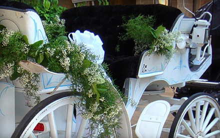 Horse-Drawn Carriage Ride for Two through Bricktown or Hotel District from Oklahoma Premier Carriage Company (Half Off)