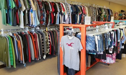 $14 for $30 Worth of Young Adult Clothing — The Posh Pocket