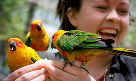 Admission for Two, Four, or Six to Tracy Aviary (Up to 52% Off)