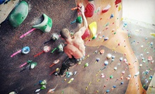 One-Month Membership, 10 Climbing Visits, or Climbing Party for Up to 10 at Evolution Rock + Fitness (Up to 71% Off)