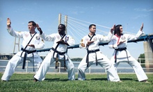 One Month of Fitness Classes or Martial Arts Classes at The Summit Martial Arts (Up to 76% Off)