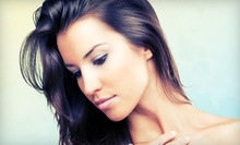 Haircut, Style, and Eyebrow Wax with Optional Highlights at Artist Hair Studio (Up to 56% Off)