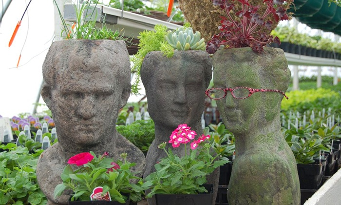 Plants and accessories viaduct gardens groupon for Gardening 4 less groupon