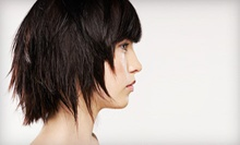 Haircut, Style, and Blow-Dry with Partial or Full Highlights or Lowlights at Filiz Hair Design (Up to 72% Off)