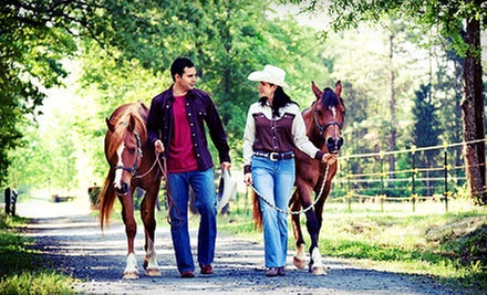 Private Horseback Trail Ride for Two or Four at Rocking M Ranch (Up to 52% Off)