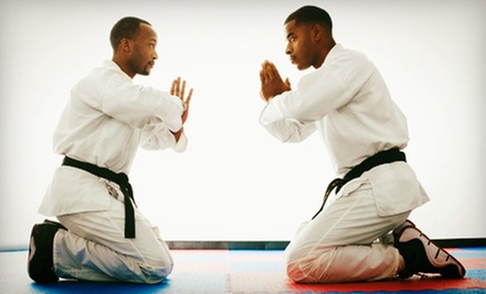 5 or 10 Brazilian Jujitsu or Mixed Martial Arts Classes at Defensive Arts Training Centre (Up to 70% Off)