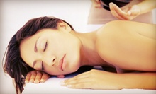 Two or Four Biomat Detoxification Treatments at Therapeutic Nutritional Services (Up to 68% Off)