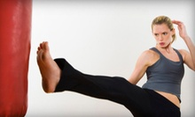 $49 for Month of Kickboxing and Boot-Camp Classes with Gloves and Intro Class at Family Martial Arts Center ($154 Value)