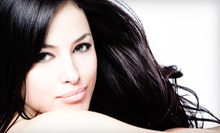 Haircut and Deep Conditioning with Optional Color or Partial or Full Highlights at Salon Cargile (Up to 61% Off)