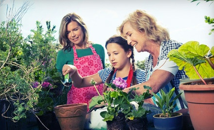 $15 for $30 Worth of Flowers, Plants, and Garden Supplies at Walnut Grove Nursery
