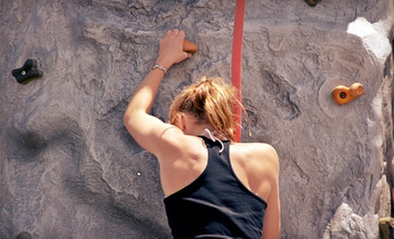 $49 for an Introductory Rock-Climbing Class and Seven Rock-Climbing Visits at X-treme Rock Climbing ($168 Value)