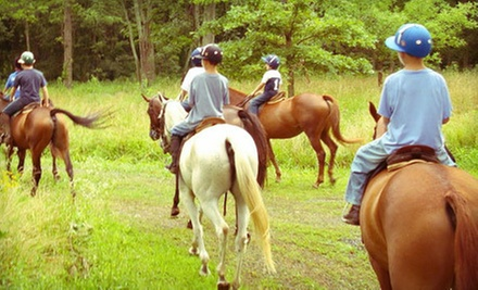 One-Hour Trail Ride on Horseback for One or Two at Middleburg Polo Academy (Up to 54% Off)