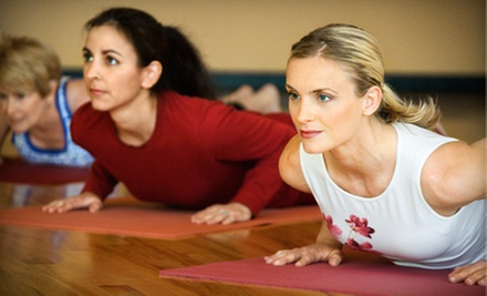 $29 for Six Weeks of Indoor Gut-Busting, Cardio Weight-Loss Boot Camp at Palm Yoga and Tampa Jiu-Jitsu ($187.50 Value)