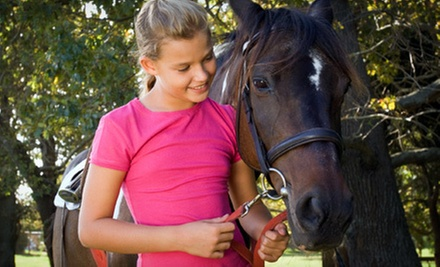 One 90-Minute Introductory Lesson or Four 60-Minute Private Lessons at Hoofbeats Equestrian (Up to 52% Off)