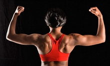 10 or 20 Fitness-Boot-Camp Classes from Optimum Bodz In-Home Personal Training (Up to 73% Off)
