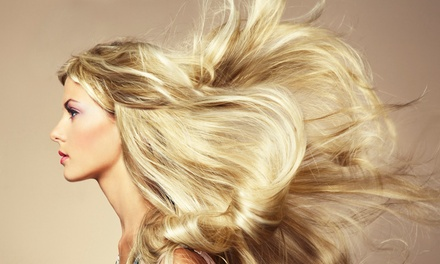 Haircut and Blow-Dry with Conditioning Treatment, Gloss, or Glaze Treatment at Tracy Adduci Salon (50% Off)