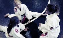Little Ninjas Martial-Arts Package or 5, 10, or 20 Kardio Kickboxing Classes at Evolution Martial Arts (Up to 64% Off)