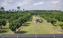 Farm Tour and Fruit Basket for One, Two, or Six at Fresh Gardens (Up to 53% Off)