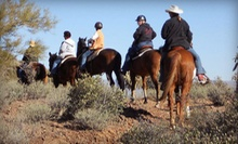 Horseback Trail Ride for One or Two at Way Out West Ranch (Up to 55% Off)