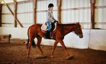 Two or Four 30-Minute Private Horseback-Riding Lessons at Pine Fall Farm (Up to 57% Off)