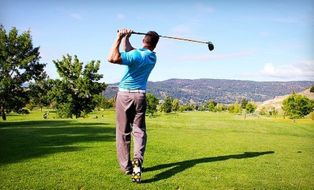Three or Six 45-Minute Private Golf Lessons from Rick DePamphilis NexLevel Golf (Up to 56% Off)