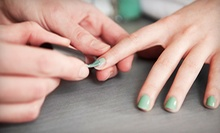 One or Two Regular or Shellac Manicures at Transforming Techniques Salon and Medical Spa (Up to 57% Off)