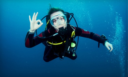 Two-Day Scuba-Certification Course or Advanced Scuba Course from Adventure Diving (62% Off)