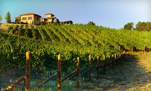 Wine Tasting and Winery Tour for Two, Four, or 10 at Wise Villa Winery (Up to 61% Off)