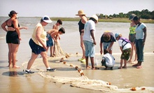 Two-Hour Beach Tour for Two, Four, or Six from Tybee Beach Ecology Trips (Up to 54% Off)