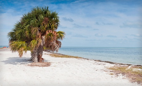 Stay at Bayside Inn & Marina in Treasure Island, FL. Dates Available Through Mid-December.
