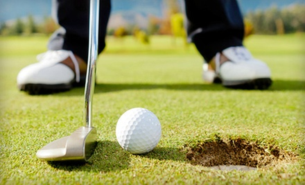 18-Hole Round of Golf Including Cart Rental and Range Balls for Two or Four at Wellington Golf Club (Up to 55% Off)