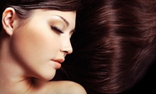 Haircut, Conditioning Treatment, and Optional Foils or Color Touch-Up at Peter Alexandra Salon & Spa (Up to 69% Off)