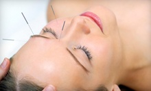 Acupuncture Package with One or Three Treatments at Blue Lotus Acupuncture Clinic in Brookfield (Up to 77% Off)