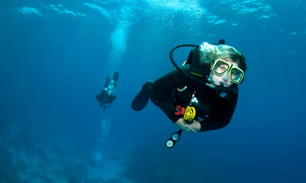 Open Water Scuba Certification Course for One or Two at The Scuba Shack (44% Off)