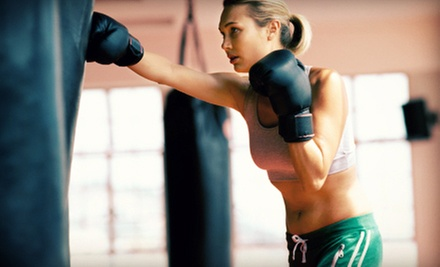 5 or 15 Boxing or Boot-Camp Classes or One Month of Unlimited Classes at Fitness Advantage (Up to 71% Off)