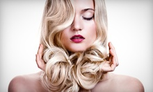 Haircut with Optional Single-Process Color, or Partial or Full Highlights at Dino Palmieri Salon (Up to 53% Off)