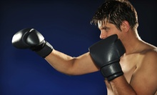 10 or 20 Quick-Fit Group Fitness Training Classes at PHAS3 Martial Arts (Up to 77% Off)