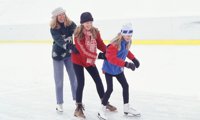 Solihull Ice Rink - Solihull: Ice Skating For Two (£8) or Four (£16) at Solihull Ice Rink (56% Off)