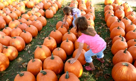 Cider Slushies, Apple-Spice Donuts, Wagon Rides, and Pumpkins for Two or Four at Union Orchard (Up to 56% Off)