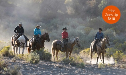 2.5-Hour Guided Horseback Ride for One, Two, or Four from Spur Cross Stables (Up to 75% Off)