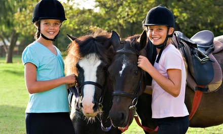 Two Private Horseback-Riding Lessons at Jon Walker Stables & Riding Academy Inc. (Up to 53% Off)