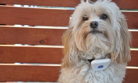 Ultrasonic Antibark Dog Collar
