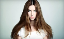 Haircut, Style, and Condition with Optional Highlights from Joanna at Salon Ventures in Kettering (Up to 67% Off)