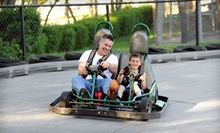 Batting Cages, Go-Karts, and Arcade Games at Selden Batting & Grand Prix (Up to 57% Off). Two Options Available.