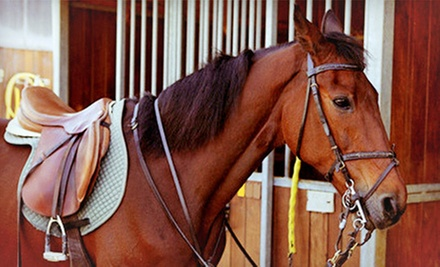 30- or 60-Minute Private Horseback-Riding Lesson at Manito Equestrian Center (Up to 51% Off)