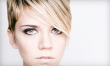 Cut and Style with an Optional Deep-Conditioning Treatment or Partial Highlights at Salon Serene (Up to 60% Off)