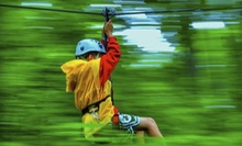 AdrenaLINE Zipline Tour for One, Two, or Four from Indian Point Zipline (Up to 51% Off)