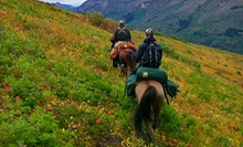 Half-Day or Two-Hour Trail Ride for Two from Alaska Horse Adventures LLC (Half Off)