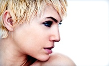 Davines Finest Pigments Color Treatment with Optional Haircut at Eco Chic Salon (Up to 61% Off)